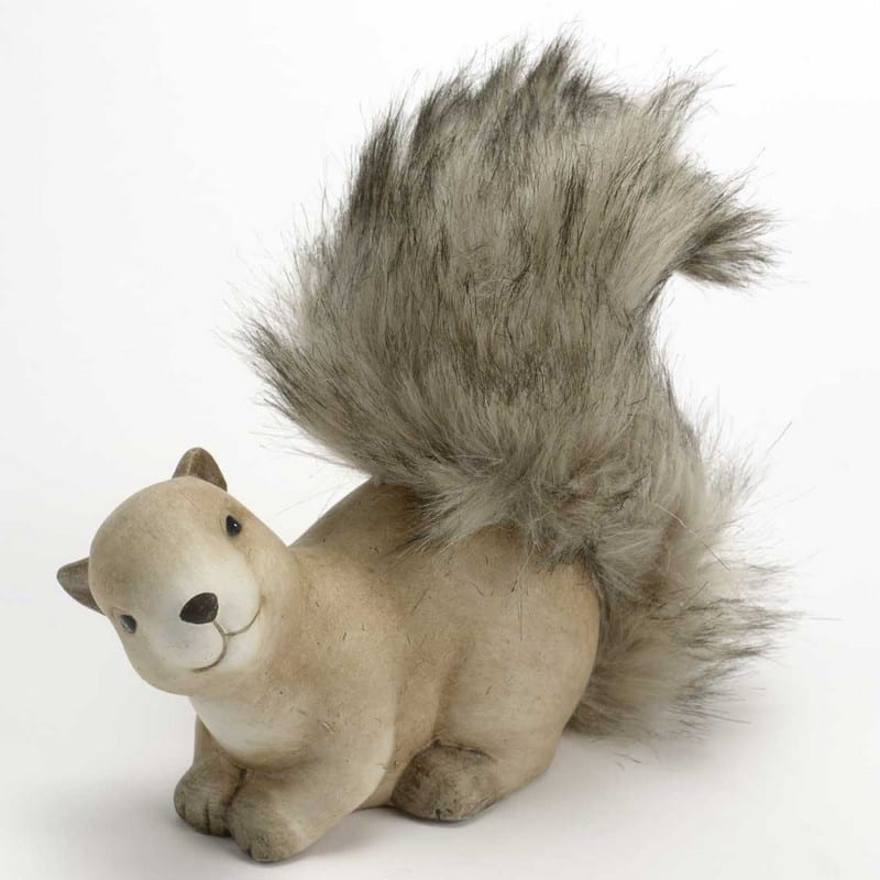 Écureuil allongé – Amadeus